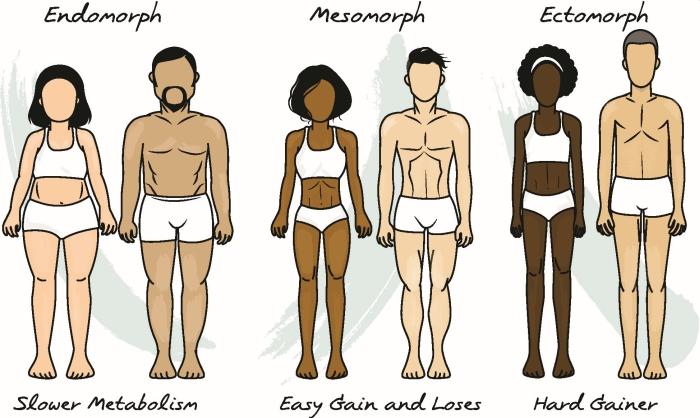 súly és izomnövelés